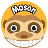 T'Brush Holder - Mason