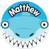 T'Brush Holder - Matthew