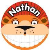 T'Brush Holder - Nathan