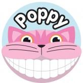 T'Brush Holder - Poppy