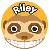 T'Brush Holder - Riley