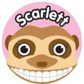 T'Brush Holder - Scarlett