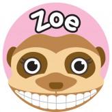 T'Brush Holder - Zoe
